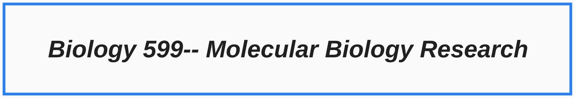 Biology 599 Molecular Biology Research Banner with Blue Border