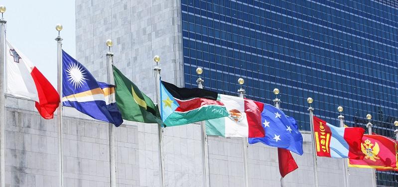 Banderas de los Estados Miembros