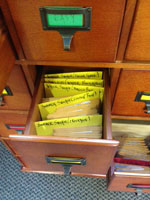 image of seed drawer wih dividers