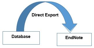 Direct export image