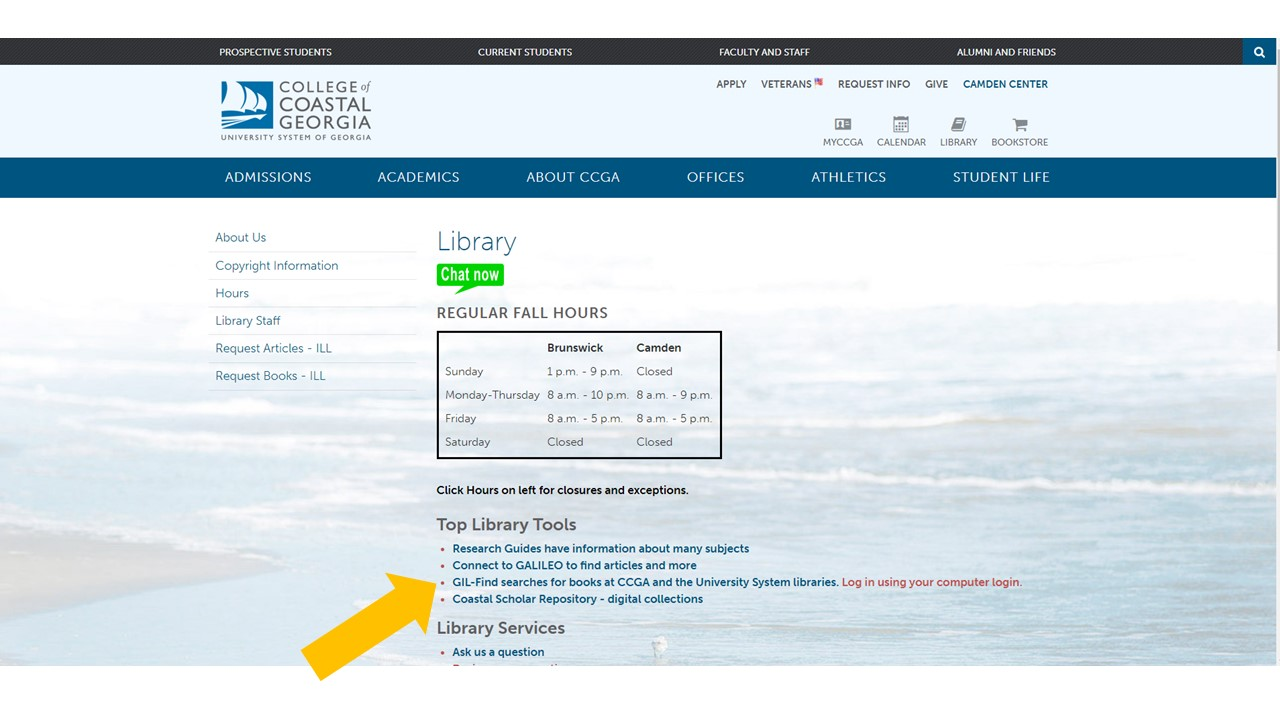 Screenshot of library home page