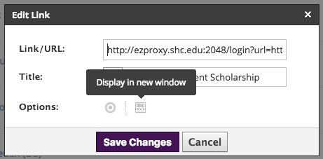 Edit Link features link/URL, title, and options. Set option to 'Display in new window.'