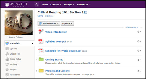 Demonstration Course on Schoology titled Critical Reading 101