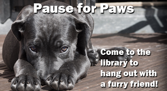 Pause for paws. Come to the library to hang out with a furry friend!