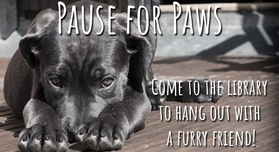 pause for paws. come relax with a furry friend.