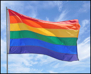 Screenshot of a photograph of the Pride Flag