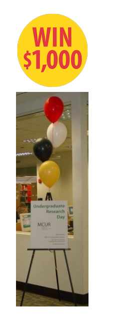 Library Award for Undergraduates