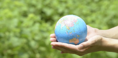 person holding a small globe