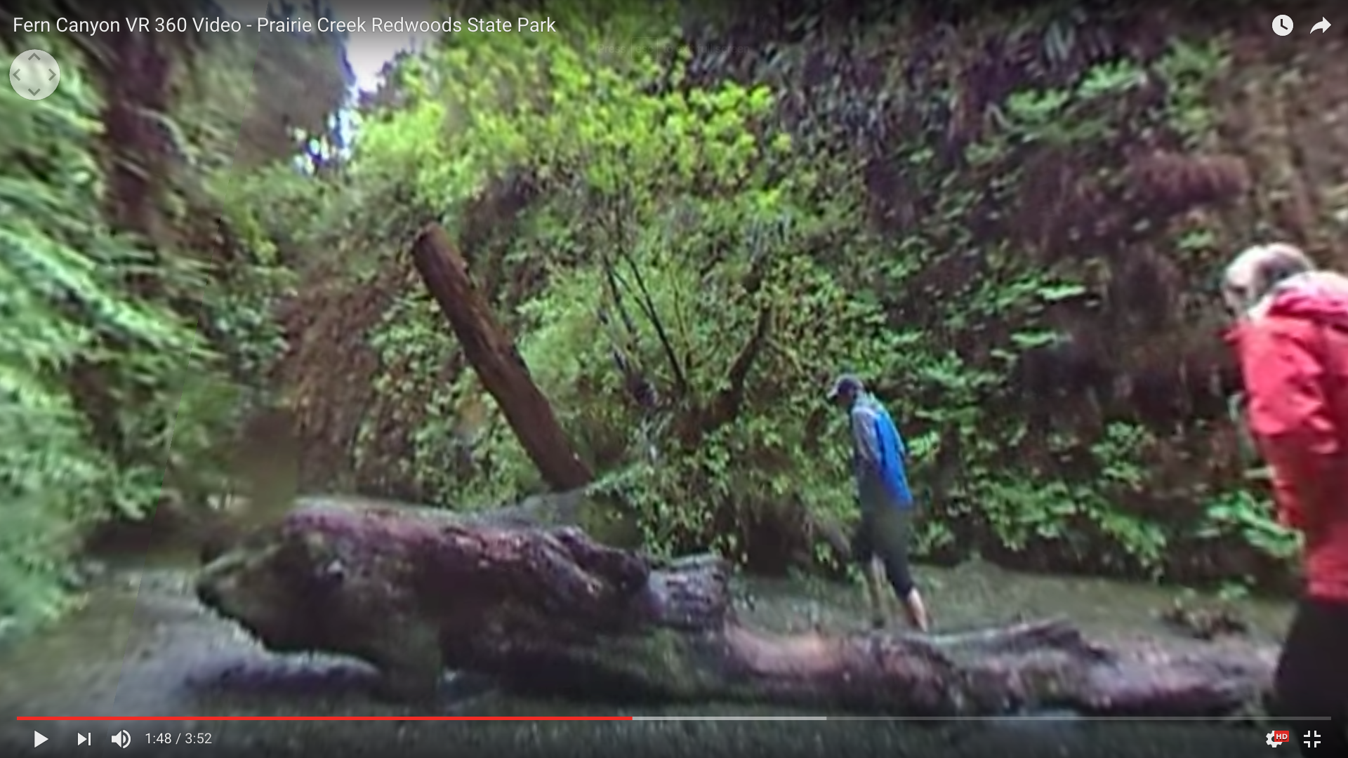Fern Canyon 360 Video - Grant Olin