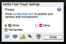 Adobe Flash Player Settings window - select Allow and Remember, then click Close.