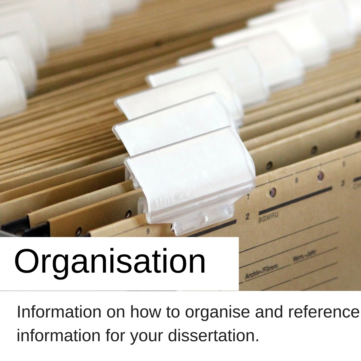 Organisation information on how to organise and reference information for your dissertation.