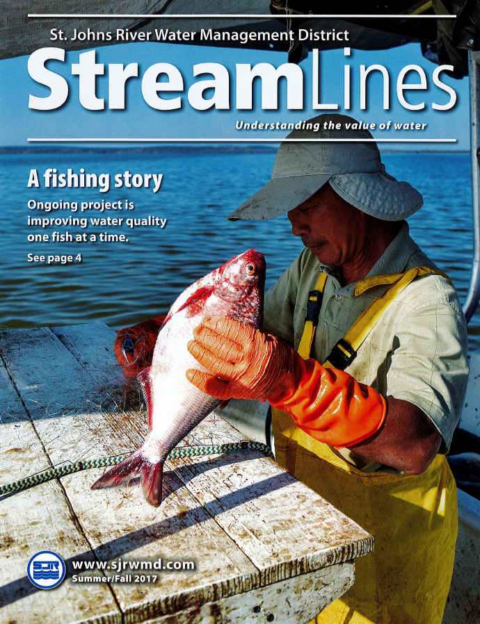 Book Title: Stream Lines