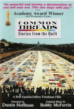 overhead image of AIDS quilt laid out on the Washington Mall