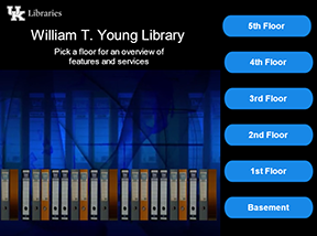 Interactive Overview of Young Library