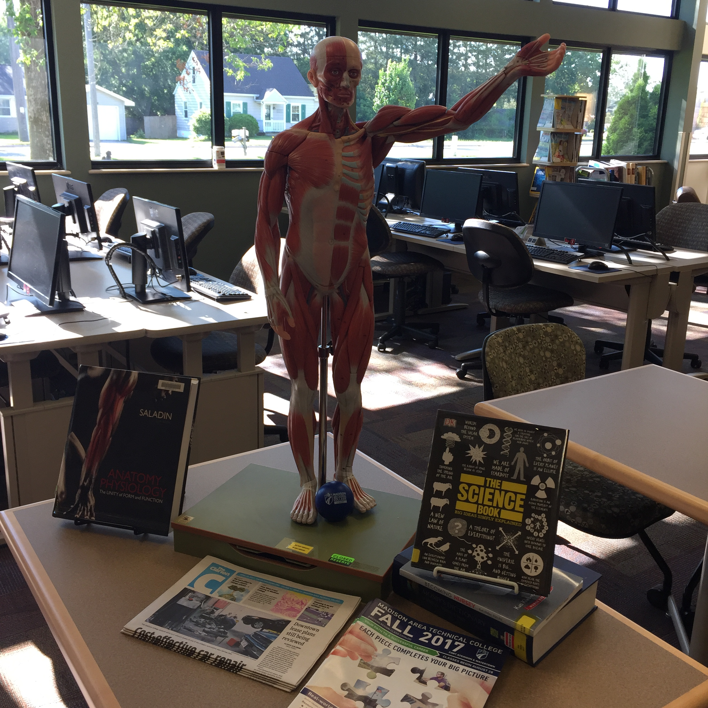 Anatomy model with book display