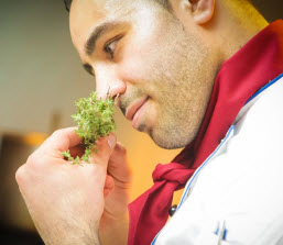 Chef smelling herb