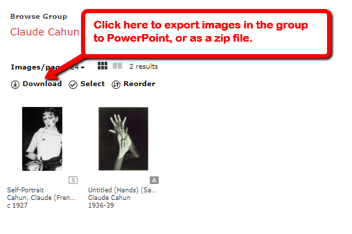 Screenshot: click the download icon in the image group to export to PowerPoint or a zip file