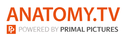 Anatomy.TV: Powered by Primal Pictures (logo)