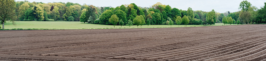 Photo of plowed field
