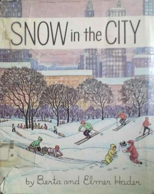 book cover image for Snow in the City