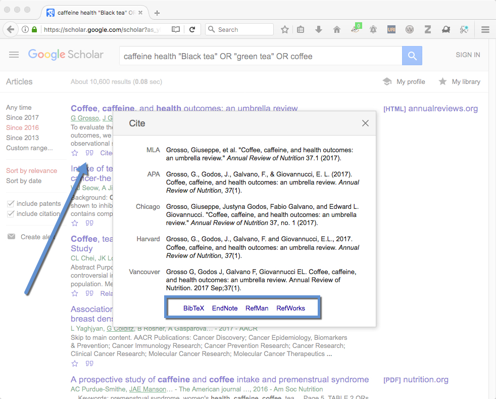 Screenshot of citation overlay in Google Scholar