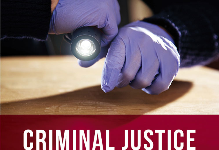 criminal justice subject guide