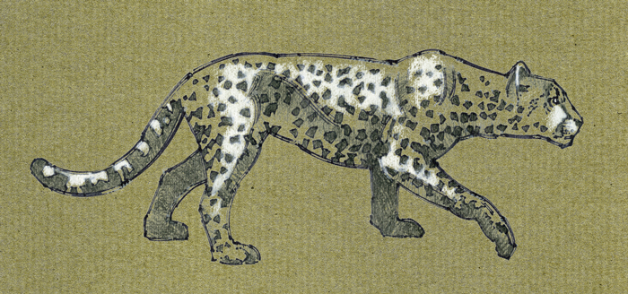 Extinct American Cheetah