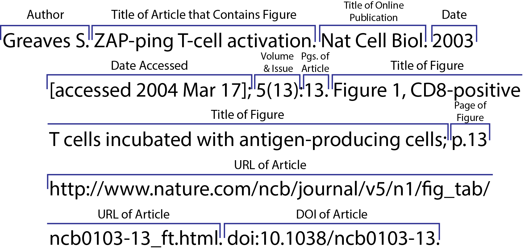 CSE/CBE 8 Citation Sequence Online Figure from Journal Article