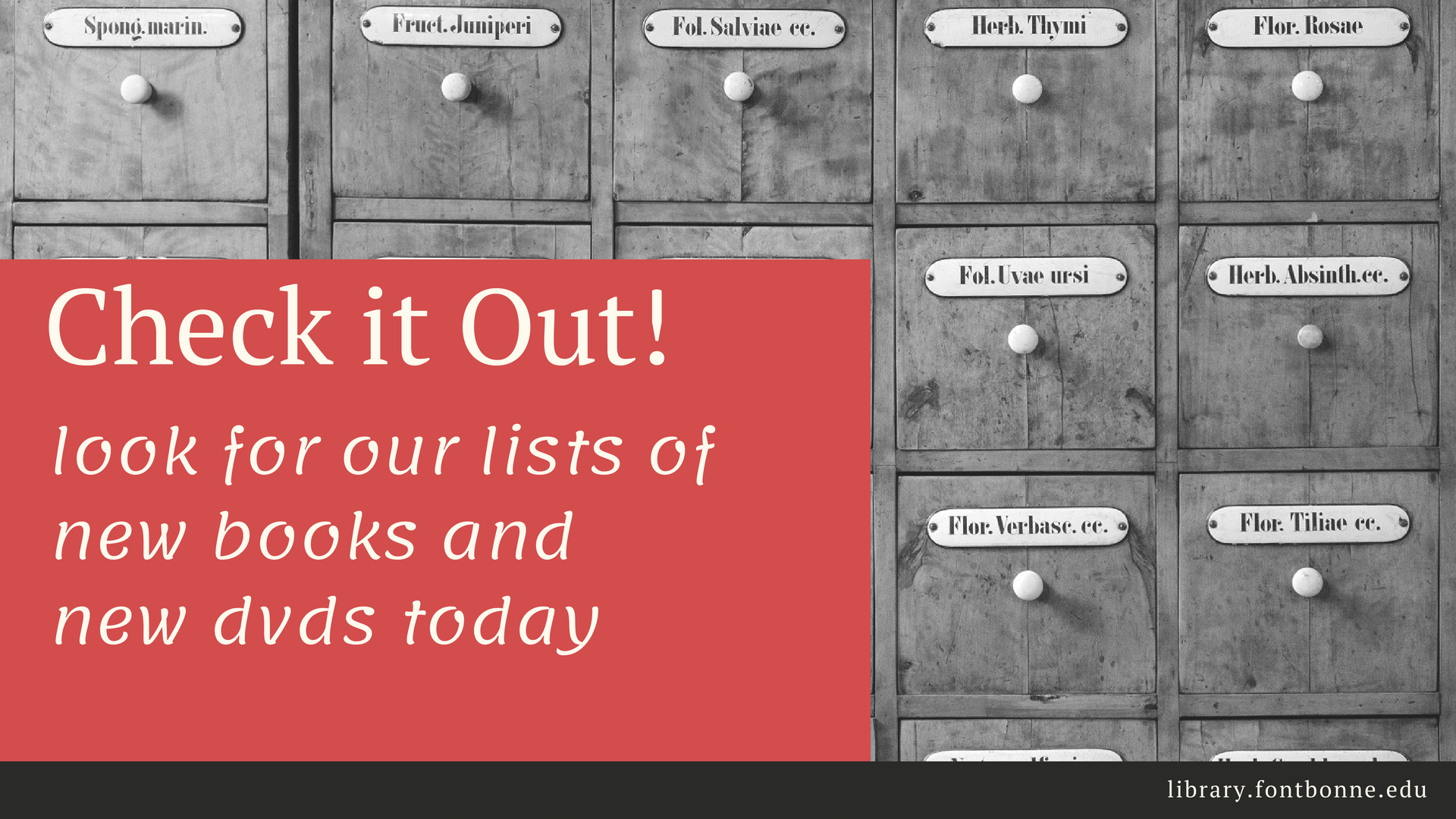 Look for lists of new books & dvds