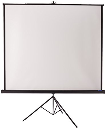 picture of projection screen available for checkout