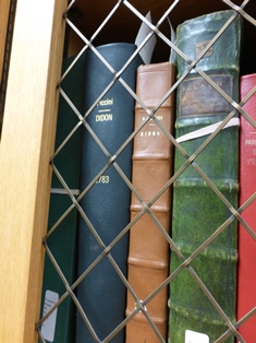 Leather-bound book spines with title Didon