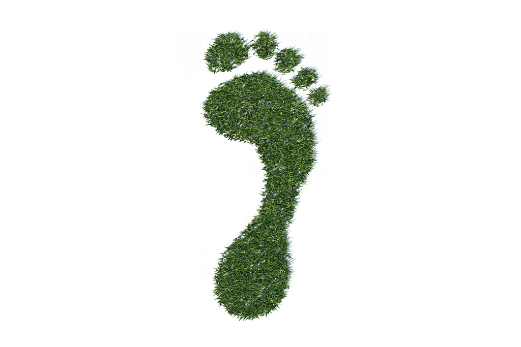 a green footprint