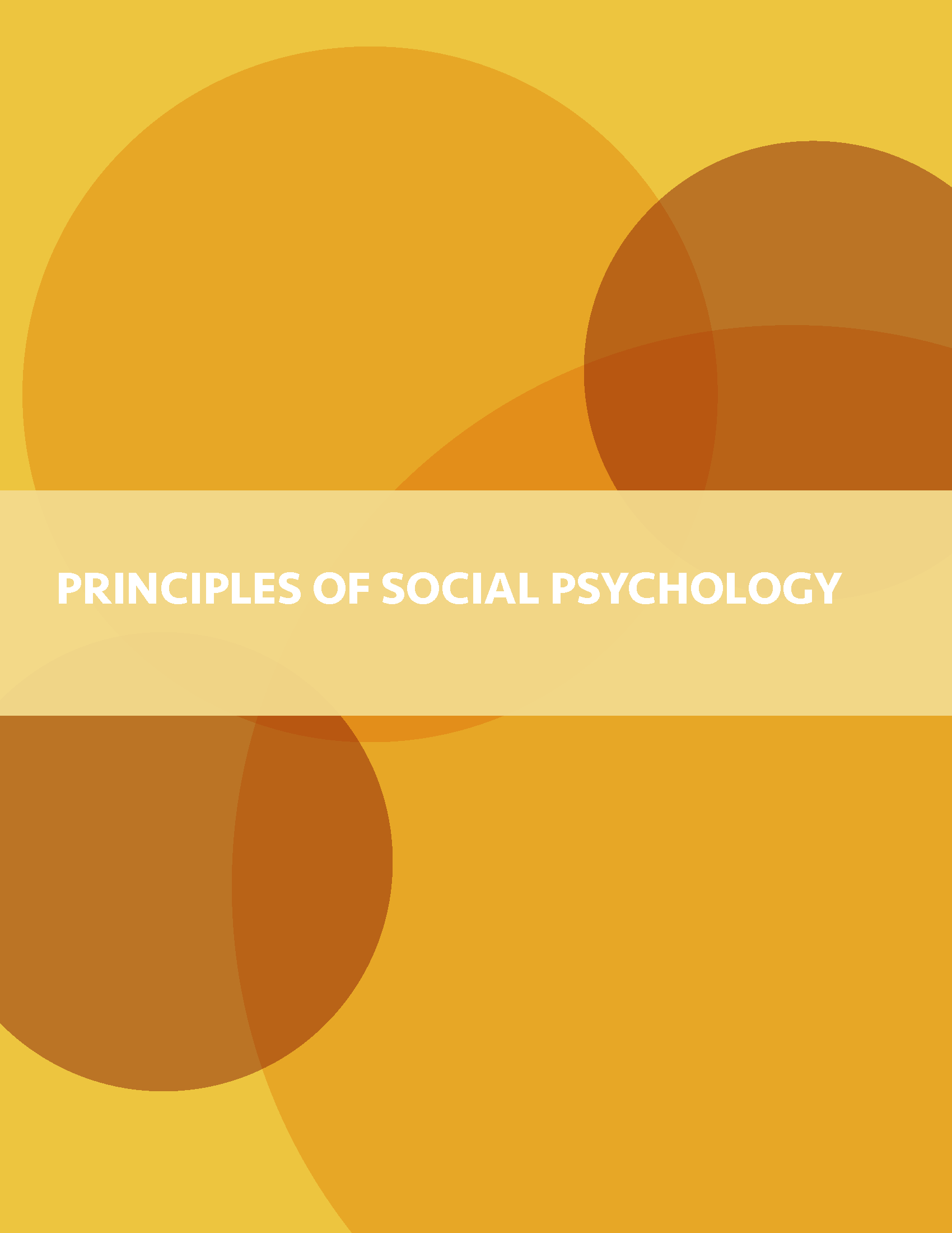 book cover for Principles of Social Psychology