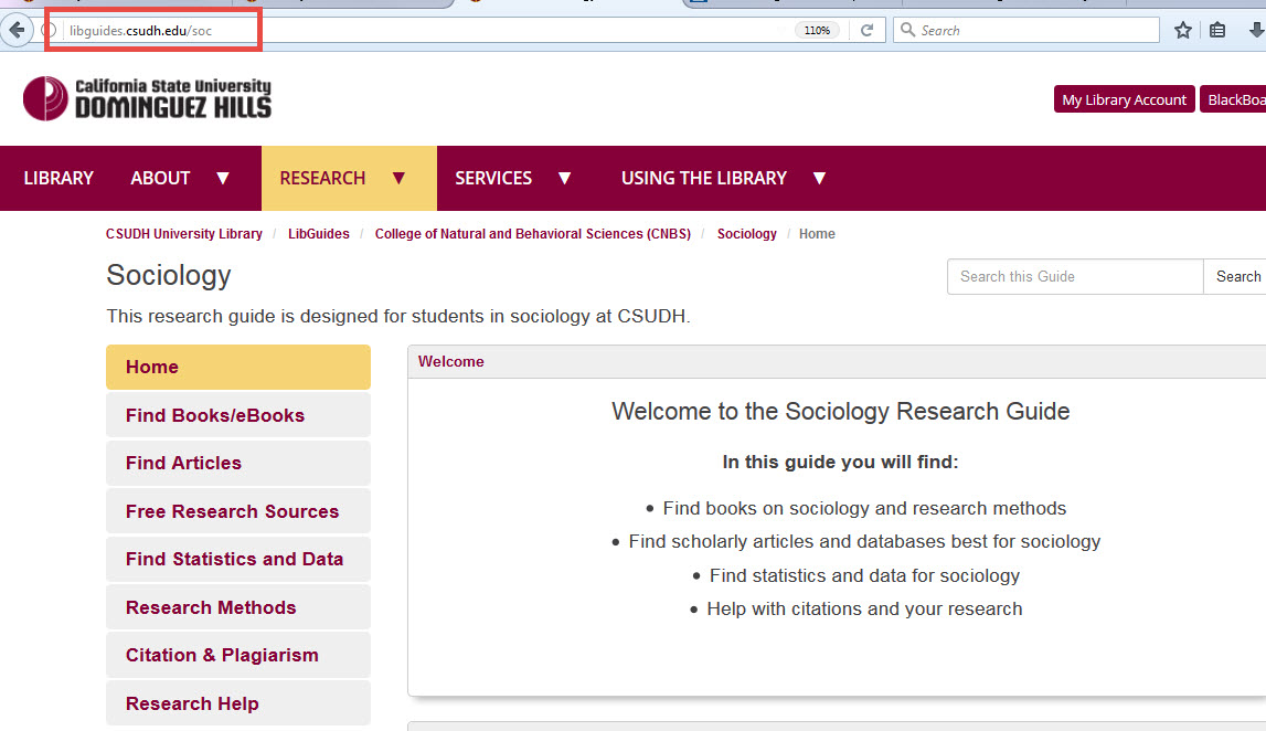 Link to a Research Subject Guide