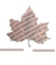 digital humanities journal