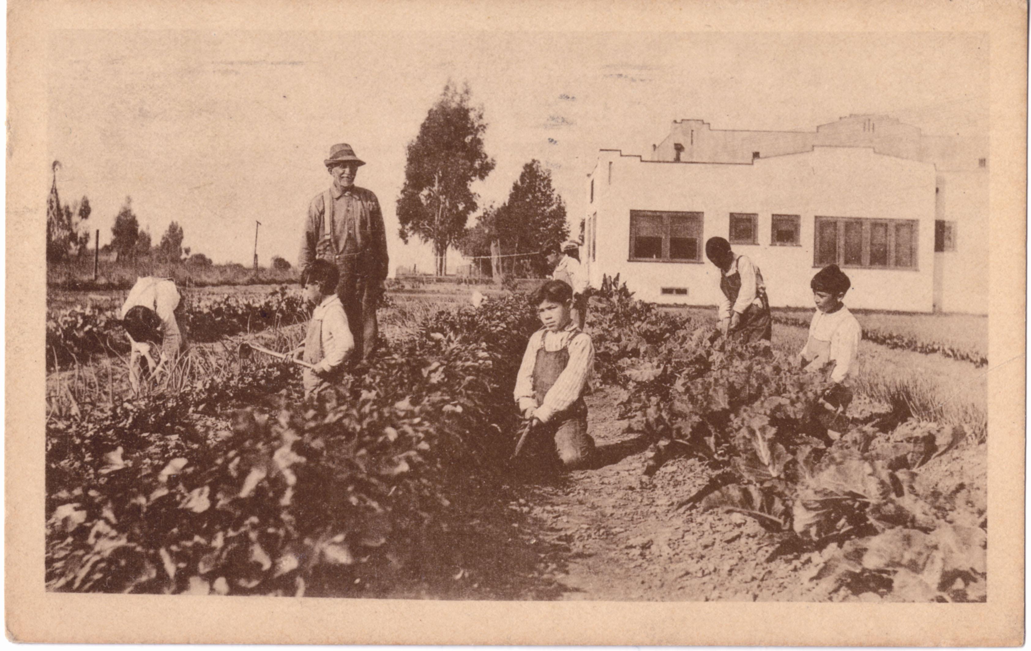 Children working in fields at Spanish-American Institute in Gardena
