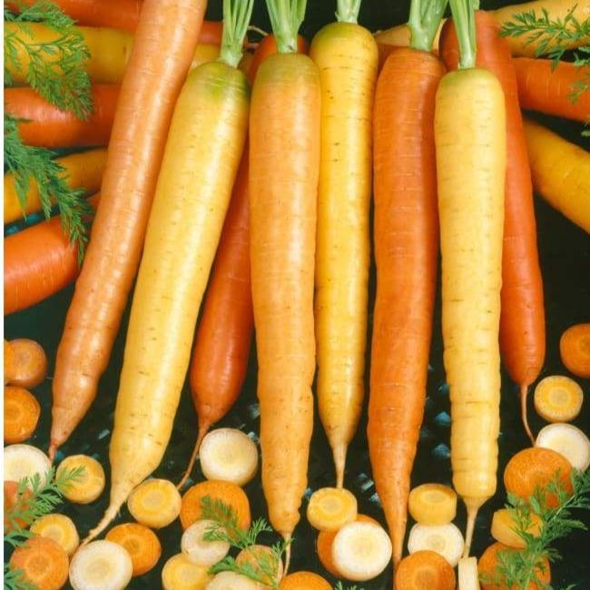 Image of orange and yellow carrots and slices