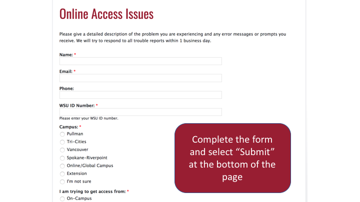 screenshot of Online Access Issues form