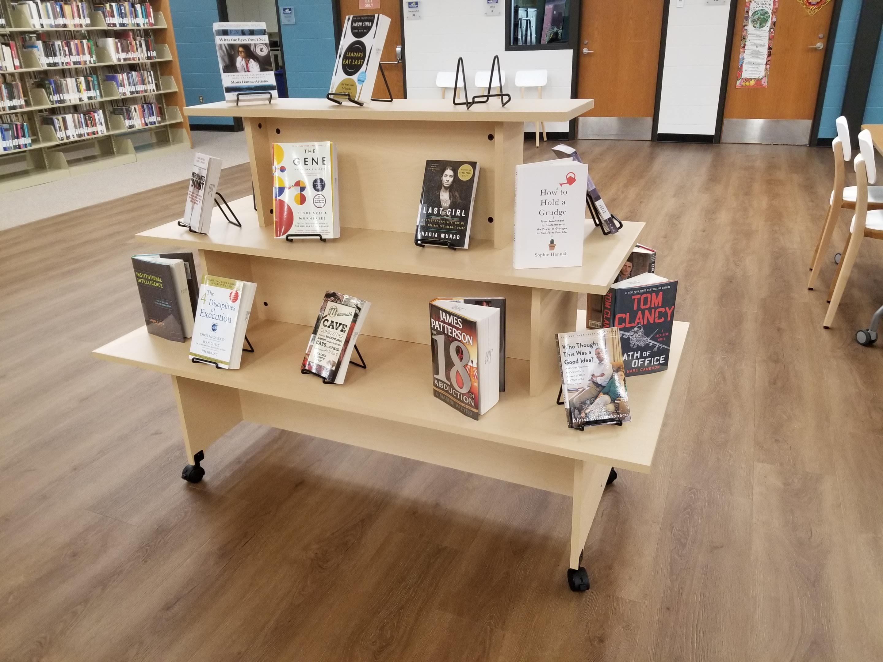 Library New Book Display