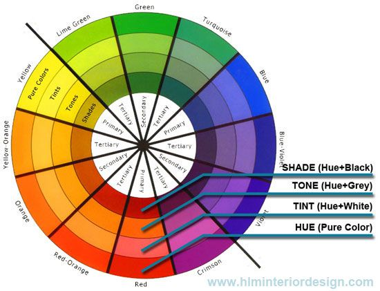Image of a color wheel with primary, secondary, and tertiary colors