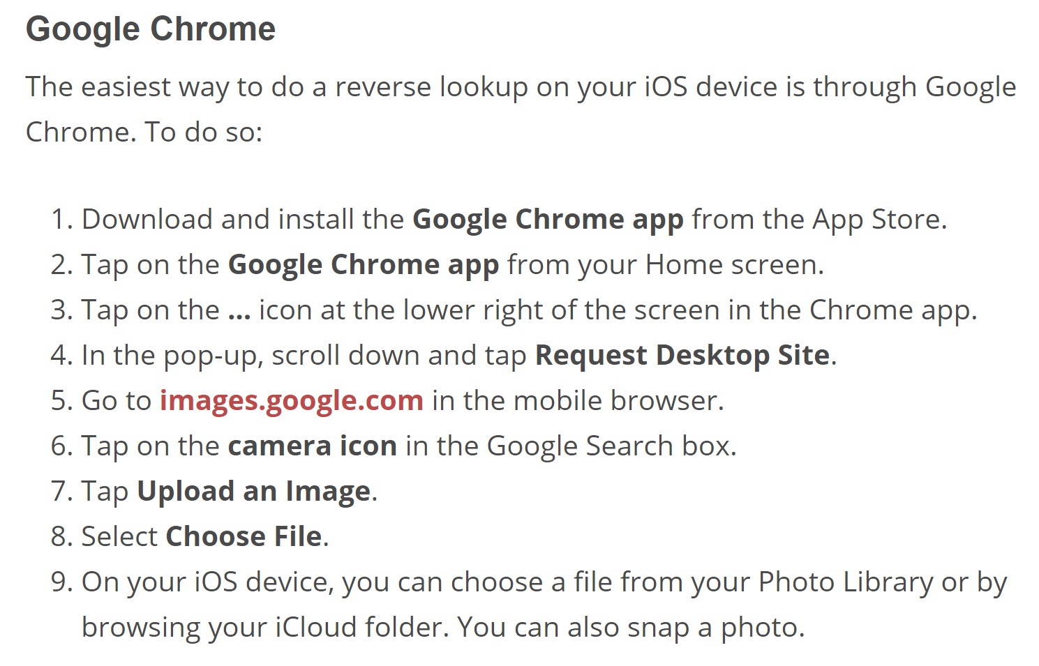 Instructions for Google Chrome Reverse Image Search