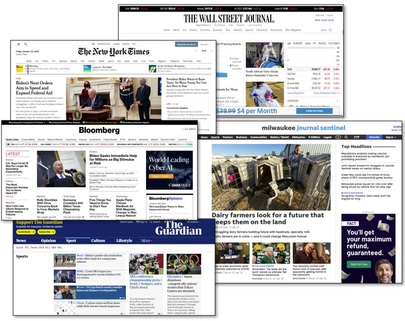 screenshots of various online newspapers