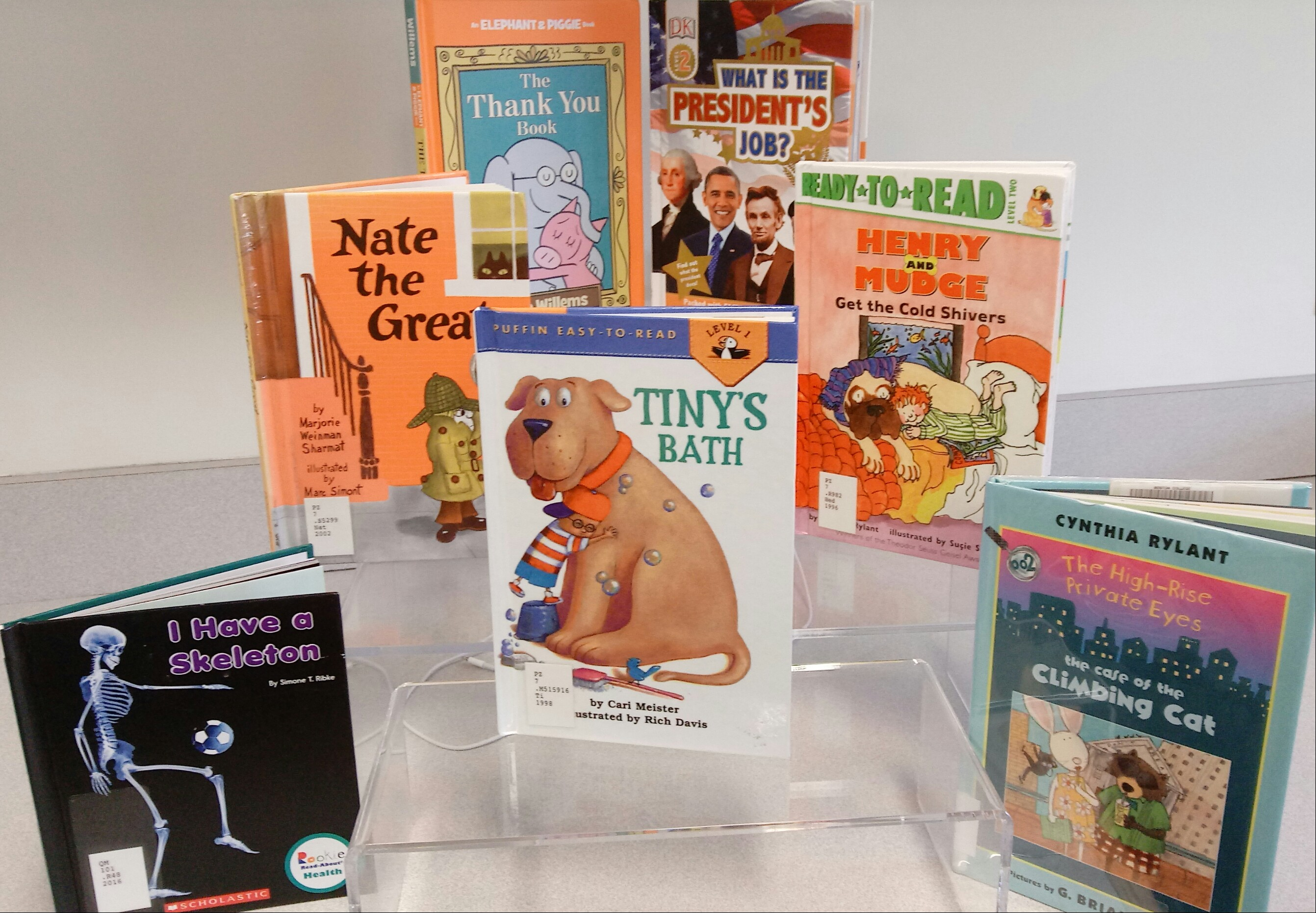 Photo of an Easy Reader book display