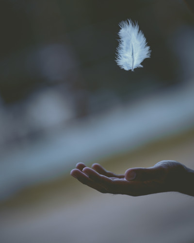hand beneath floating feather