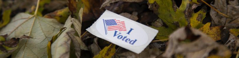 I voted sticker on fallen leaves