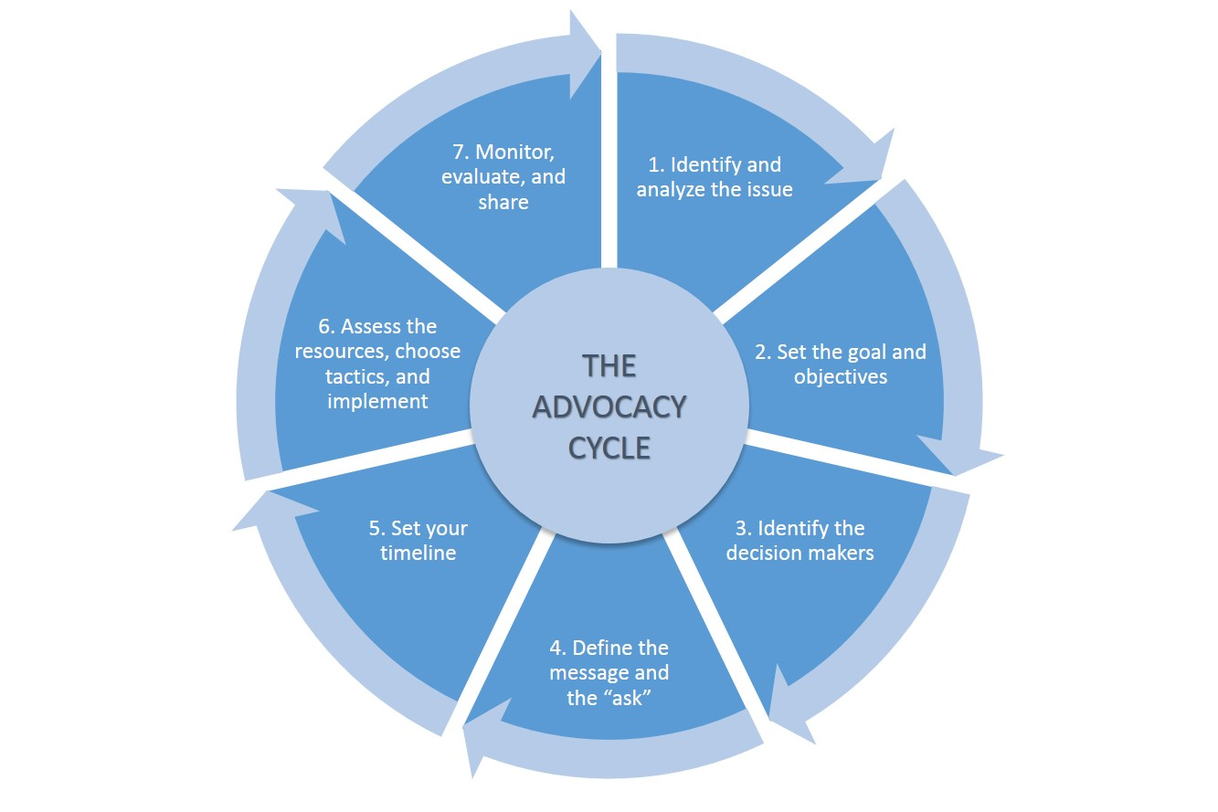 graphic of advocacy cycle