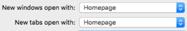 Safari Homepage Selection Options for Windows and Tabs