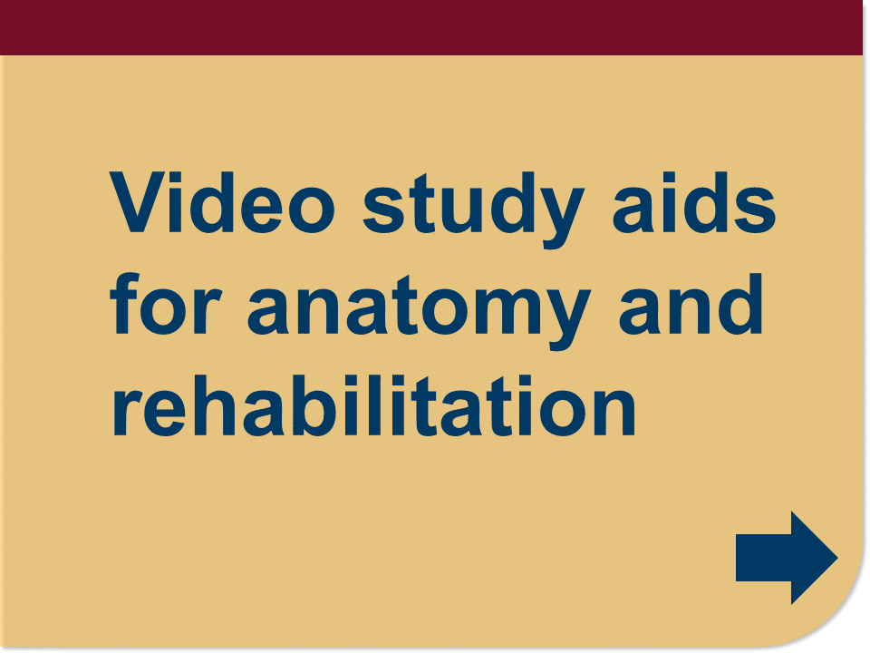 video study aids for anatomy and rehabiliation