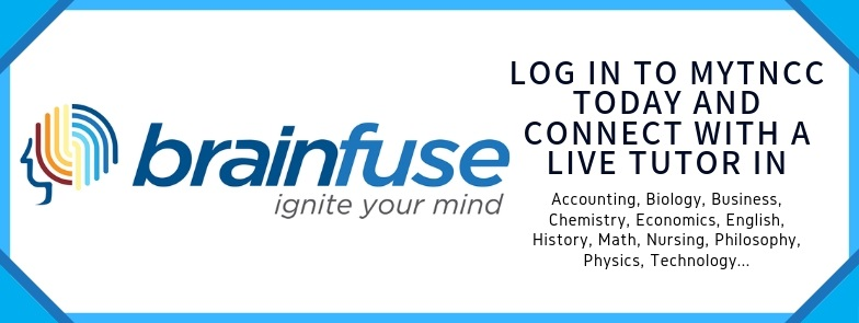 Brainfuse Online Tutoring