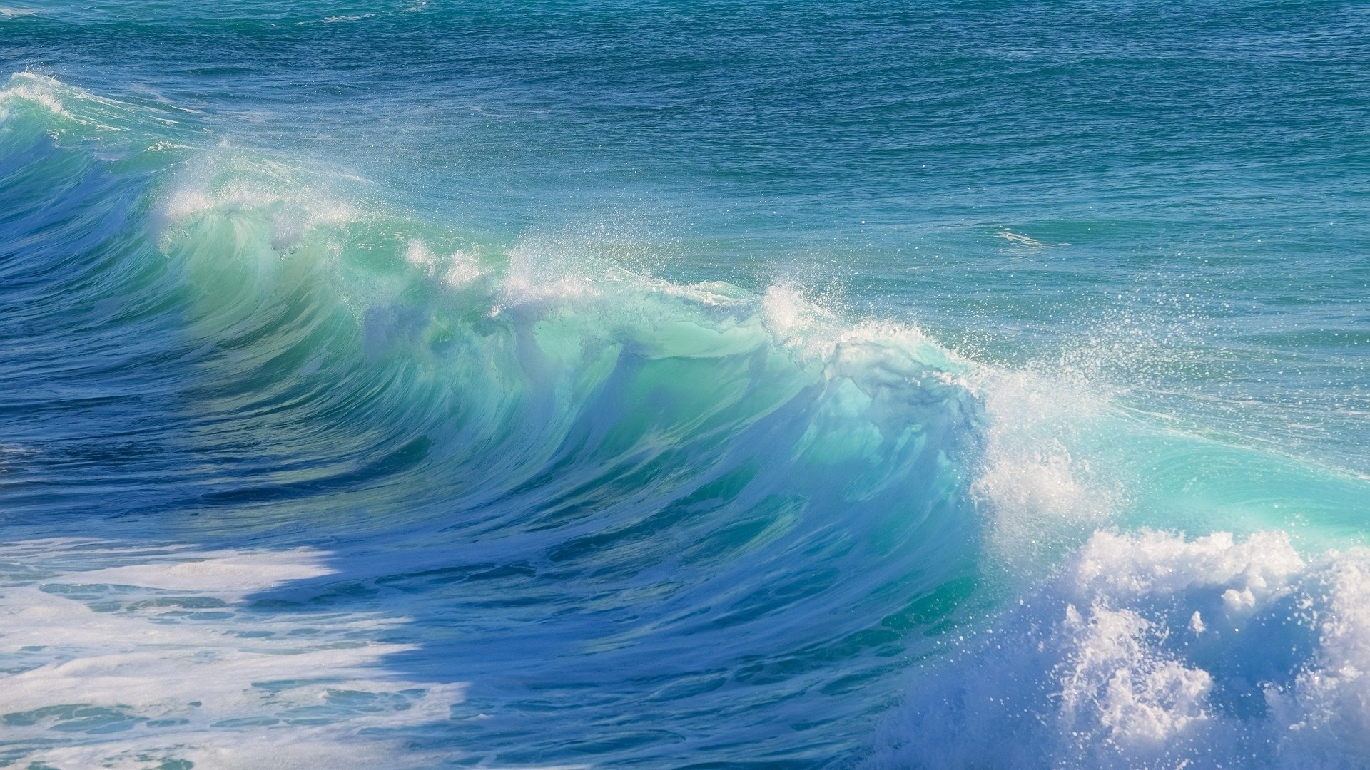 Blue, green and white waves curling up to break